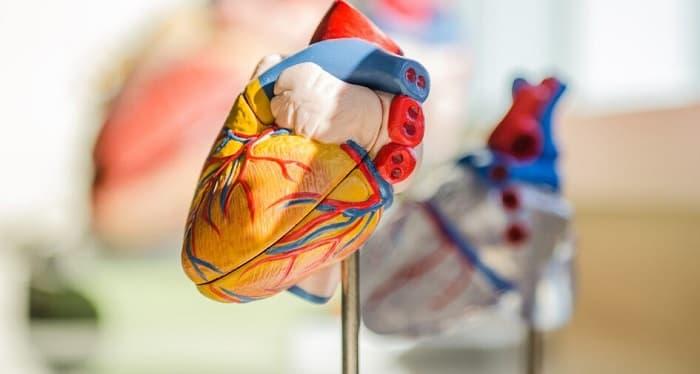 ویروس کرونه چگونه قلب را درگیر میکند؟